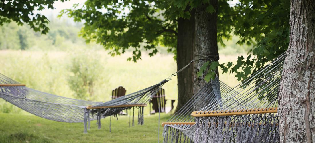 Geef je hoofd en lijf pure ontspanning door even niets te doen. Een manier van mindfulness bezig zijn en weer energie op te doen. Detox is niets doen!