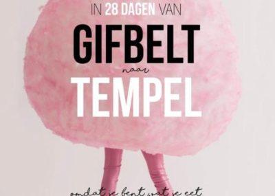 Boek recensie van detoxcoach Nico van Rossum over In 28 dagen van gifbelt naar tempel van detoxcoach Jacqueline van Lieshout editie 2016.