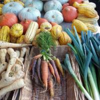 Detox seizoensgroenten van december. Goedkoop, vol van smaak en regionaal verkrijgbaar voor heerlijke detox recepten.